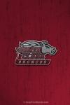 SC Broncos Logo